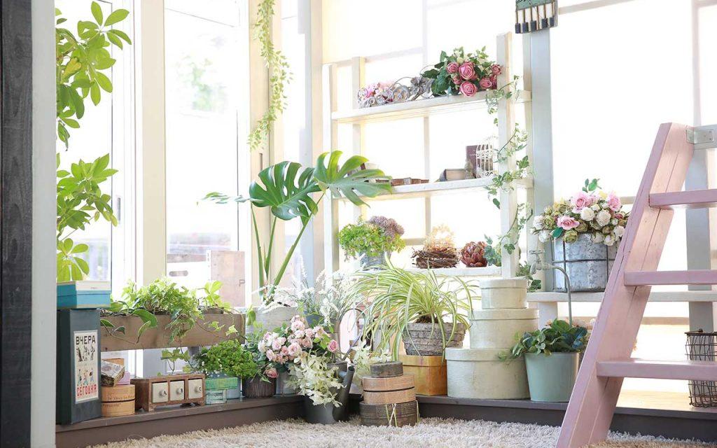 宮の森店の内観写真